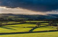 Farmland prices in England fell in second quarter of 2017