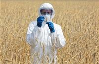 Scientists call for global crop network to help combat food insecurity