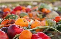 UN calls for zero tolerance on food loss and waste
