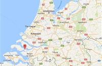 Bird flu reported in Netherlands - 41,500 birds culled