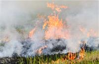 Farmer loses entire winter supply of straw due to farm fire