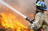 'It looks like an inferno': Fire breaks out at Welsh poultry farm