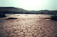 South east of England faces summer drought, Environment Agency warns