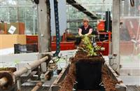 Embrace new technologies to battle lack of labour, horticultural experts say