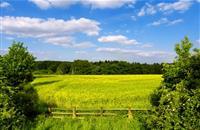 Next round of Scotland's Agri-Environment Climate scheme now open