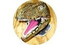 Dinostar - Hulls Dinosaur Experience