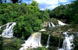 Scottish Wildlife Trust Falls of Clyde