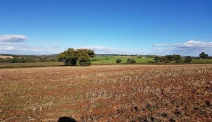 8.19ac arable land