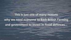 Back British Farming: How 2014 winter floods impacted dairy farmers
