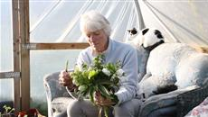 British flower growers struggle to compete with imports as Valentines day looms