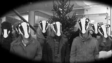 A Christmas Carol... for badgers!