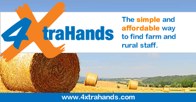 4xtrahands Ltd