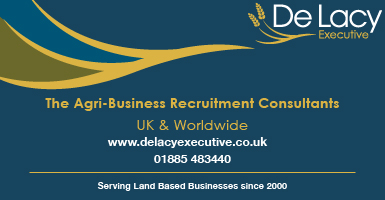De Lacy Executive Ltd