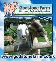 Godstone Farm