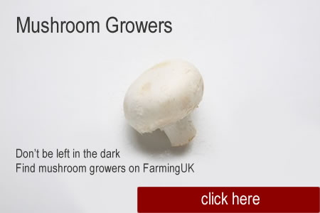 MushroomGrowersImage