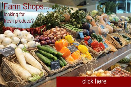 FarmShopsImage