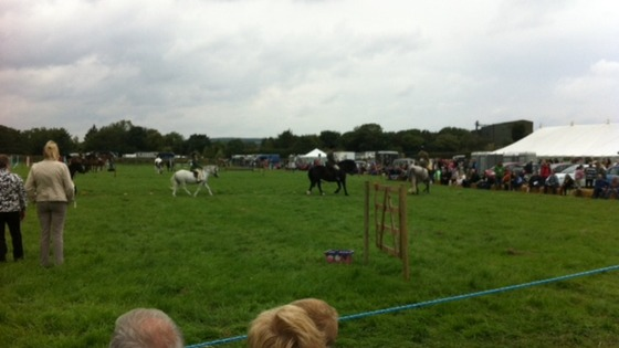Burniston Agricultural Show 2016