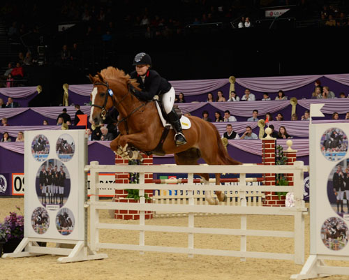 Horse of the Year Show 2016
