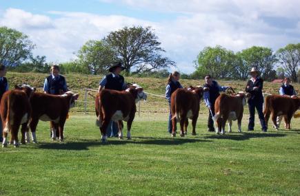Launceston Agricultural Show 2016