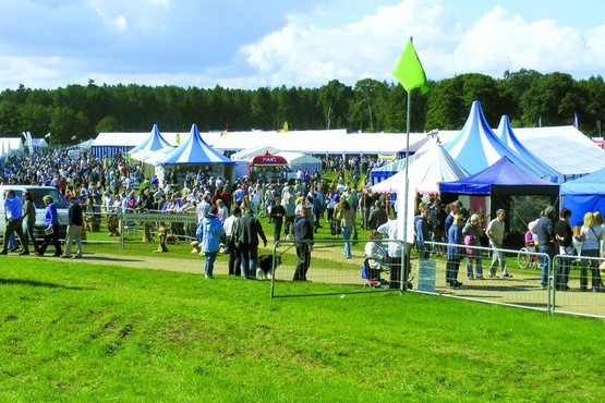 Wiltshire Game & Country Fair 2016
