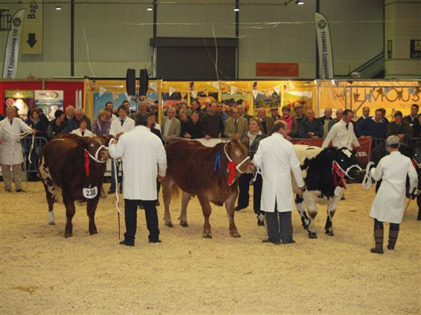 Anglesey Winter Show 2016