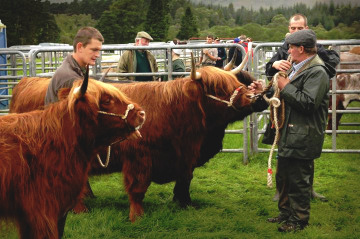 Lochaber Agricultural Show 2016