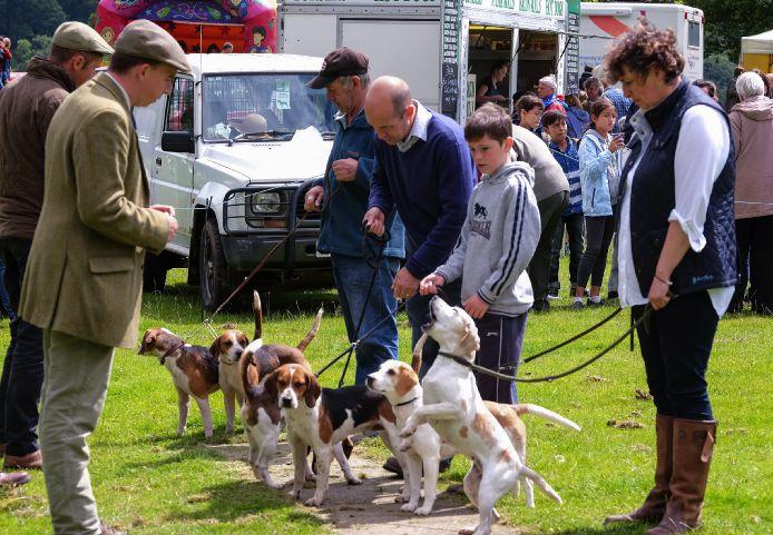 Corniston Country Fair 2017