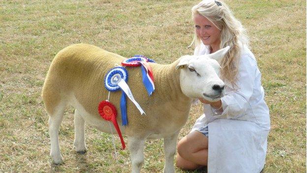 Southern Agricultural Show 2016