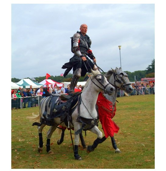 Robin Hood Game & Country Show - Newark 2016