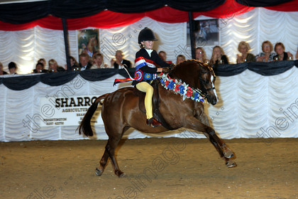 British Show Pony Society Summer Championship Show 2016