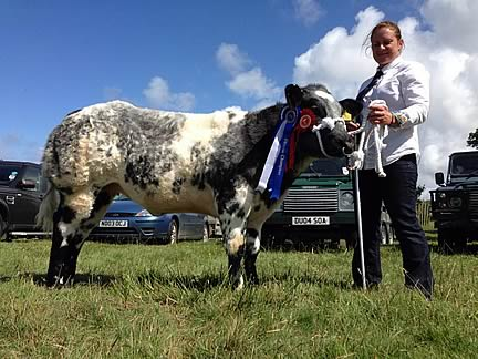 Woolsery & District Agricultural Show 2016