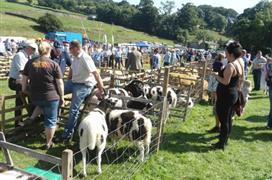 Reeth Show