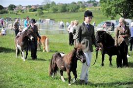 Great Harwood Show 2017