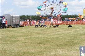 Hockwold Country Fair