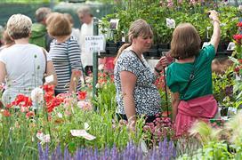 Newbury Flower Show 2017