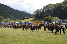 Monmouthshire Show 2017
