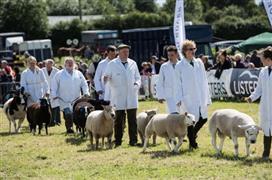 Hanbury Countryside Show