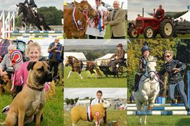 Hartington Wakes Sports and Country Show