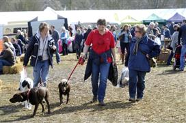 Framlingham Country Show 2017