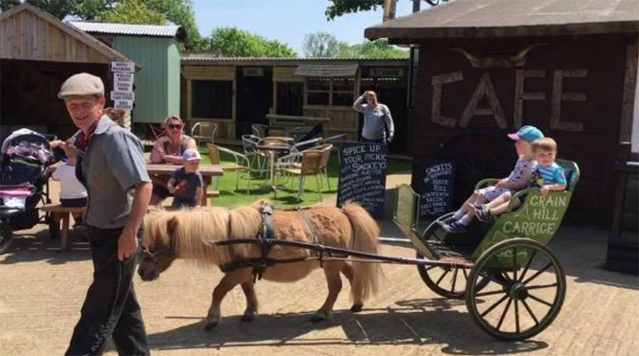 Dorset Heavy Horse Farm Rescue Centre