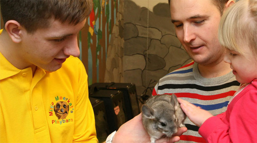 Millie Meerkats Playbarn
