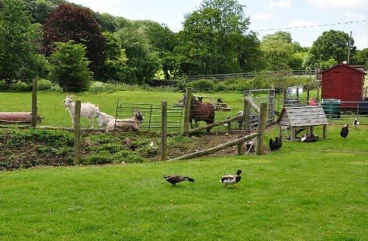 New Mills Farm Park