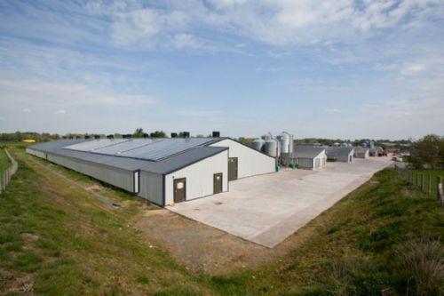 A New Breed Of Solar Farm Farming Uk News