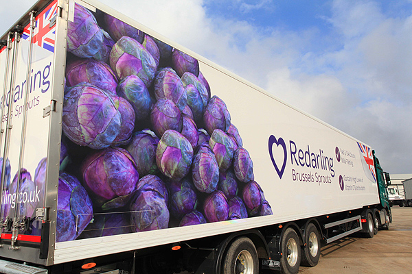 Redarling On The Move For Tasty Sprout Delivery Farming