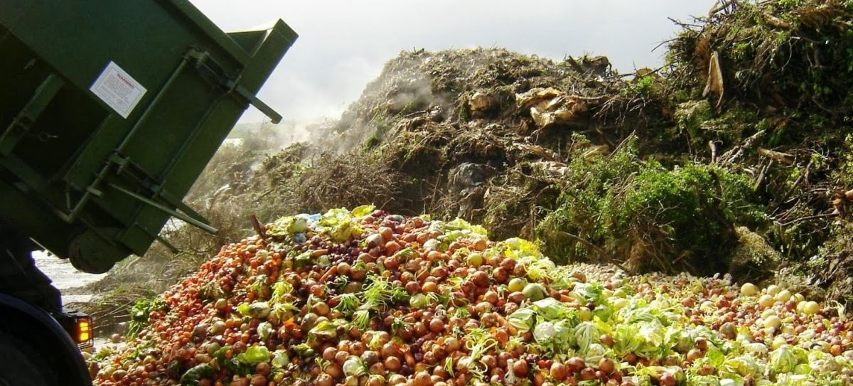 Turning rotting food and farm waste into electricity