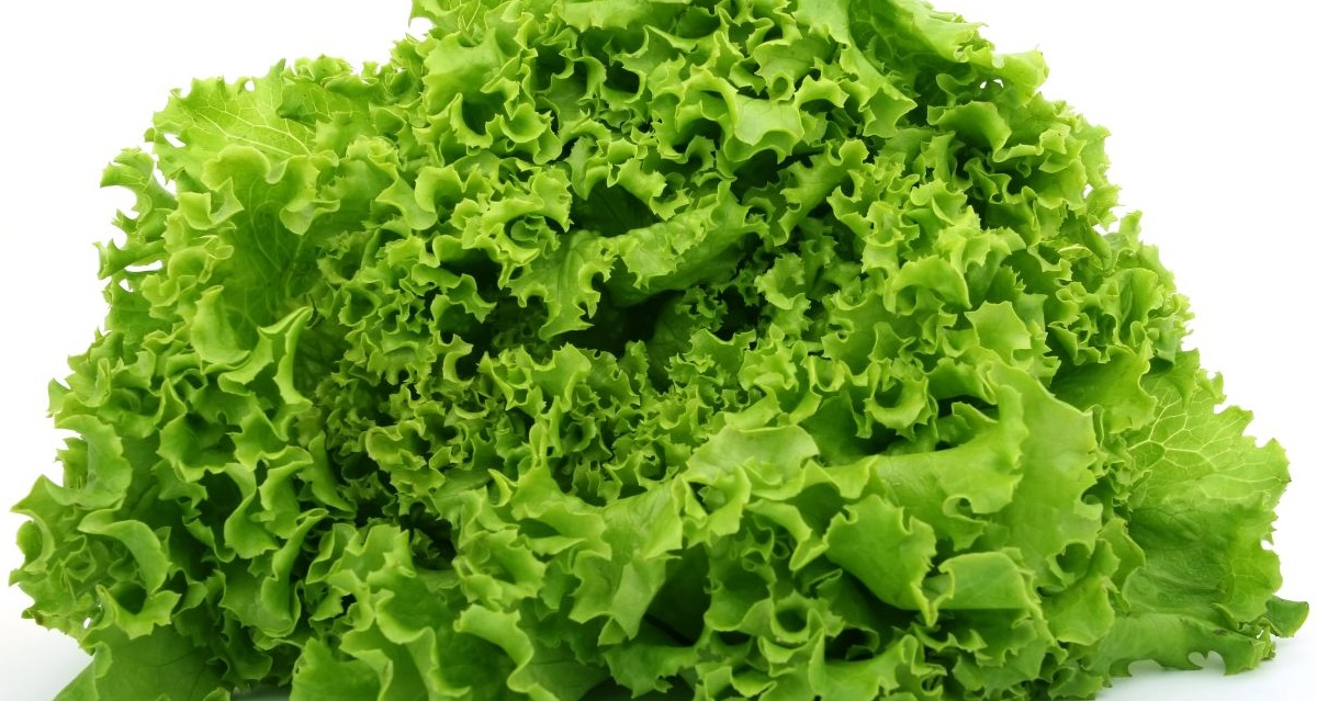 Could eating lettuce be worse for the environment than eating bacon?