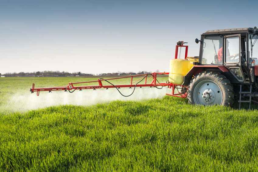 Glyphosate turns out to be more persistent in water and soil than previously recognized