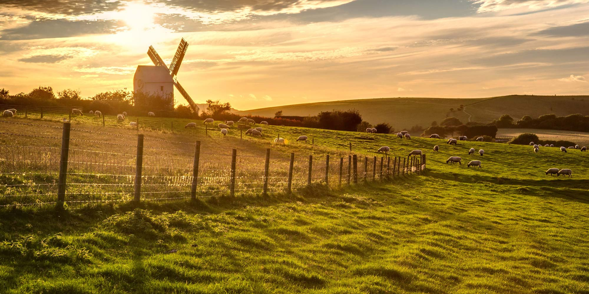 New Plan Gives Every Schoolchild A Chance To Visit Rural