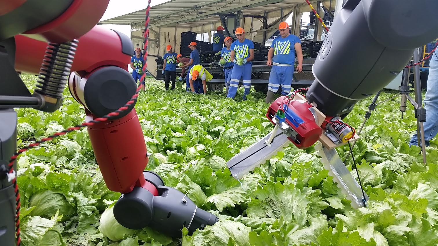 Robots are emerging as agricultural co-workers