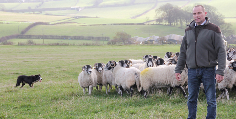 Phil Stocker, National Sheep Association chairman said Brexit needed to bring tighter controls on New Zealand lamb